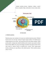 Struktur sel eukariotik.docx