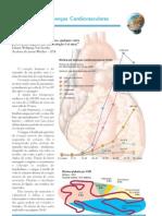 Tipos de Doencas Cardiovasculares