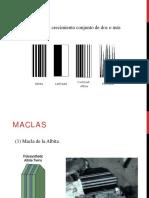 Clase_2_maclas_y_feldespatos.pdf