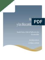 Biocombustibles Honduras
