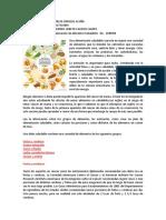 Elaboración Alimentos Saludables Año 2018