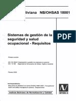 Manual Syso 18001