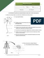 Teste 6 - nervoso.pdf