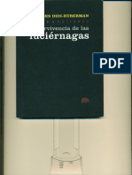 DIDI-HUBERMAN-Supervivencia de las luciernagas.pdf