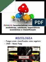 aula 6- fungos.ppt