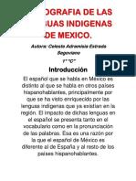 Monografia de Las Lenguas Indigenas de Mexico
