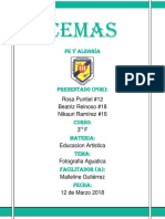 presentacion de CEMAS-2017.pdf