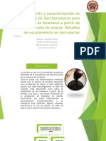 Aislamiento Bioinformatica.pptx