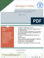 1 FAO 2011Variabilidad y Seguridad Alimentario TODO