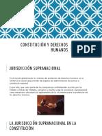 Constitución y derechos humanos X