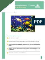 RP-CTA1-K01 - Ficha N° 1.doc.pdf