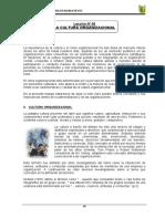 cultura oprganizacionañ jose.pdf