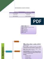 Caracterización de Los Aceites Esenciales