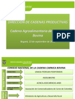 Presentacion Cadena
