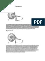 Micrófonos Tipos y Características