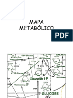 10 - Mapa metabólico.ppt