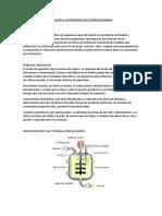Bioreactor y Su Importancia en La Industria Pisquera