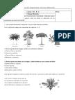 Evaluacion Diagnóstica Ciencias Naturales 4