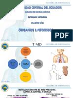 Organos Linfoideos