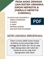 Askep Pada Anak Dengan Gangguan Sistem Urinaria (