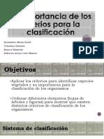 Criterios-para-la-clasificación-1