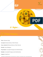 Pimento_a_lupa_Santos_Populares_Final_1.pdf