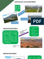 Escalas de Ecosistemas