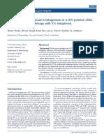 Theiler2011.pdf
