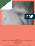 greiner_christine_el_colapso_del_cuerpo.pdf