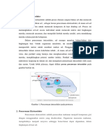 Proses Alimentasi & Organ2 Pencernaan