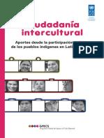 Libro Ciudadania Intercultural Pnud Democracia