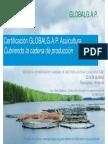 Certificación GlobalGAP acuicultura, cubriendo la cadena de producción - Efraín Calderón, Ecuador.pdf