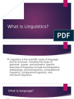 What is Linguistics