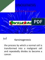 Karsinogenesis.ppt