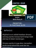 Blighted Ovum (1)