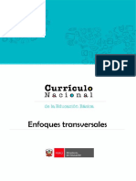 Enfoques transversales.pdf