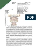 Anatomy Quiz 31418