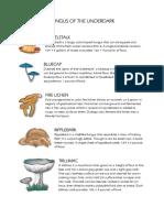 Fungus of the Underdark