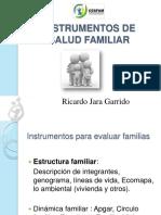 133508876.instrumentos-de-salud-familiar-2010.pdf