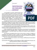 Formación Engel & Liberman 2018