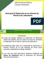 06_guia Informe de Laboratorio