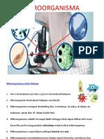 Pengenalan Mikroorganisma Sains Tahun 5