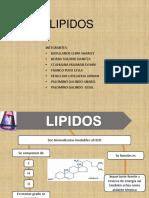 lipidos 3A