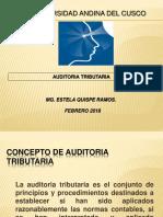 AUDITORIA TRIBUTARIA (2)