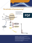 The Principle of Pyrosequencing