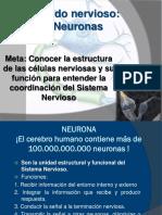 Clase 5 Neurona