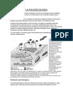 La Paleoecologia