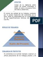 VIGILANCIA DE PROYECTOS.pptx