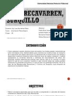 Innovacion Tecnologica - Grupo 08 - Caso Recavarren Final