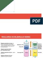 Reglarea mecanismului hidric